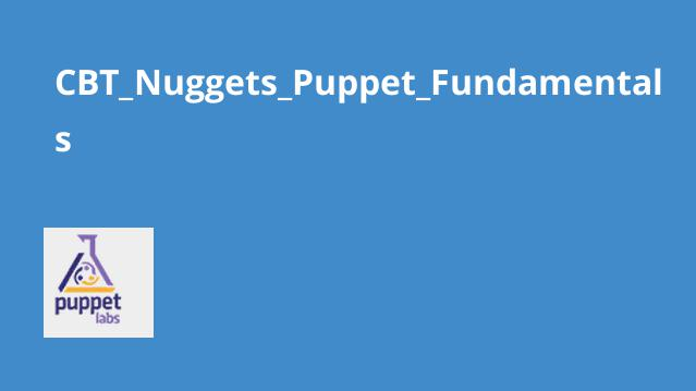 Cbt nuggets puppet