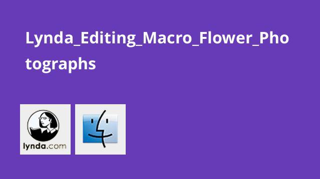 آموزش ویرایش عکس هایی با گل های انبوه