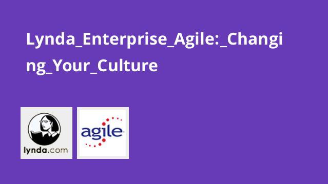 Lynda Enterprise Agile: Changing Your Culture