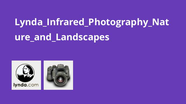 Lynda Infrared Photography Nature and Landscapes