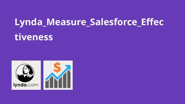 Lynda Measure Salesforce Effectiveness