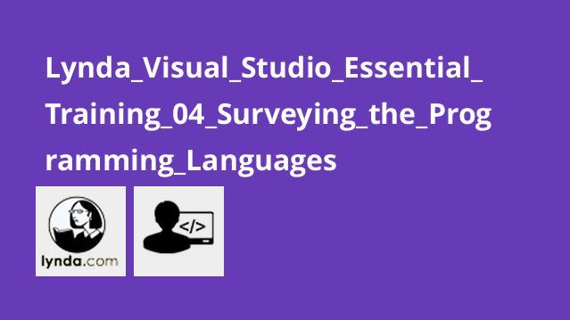 آموزش اصولی ویژوال استودیو : بخش چهارم – بررسی زبان برنامه نویسی