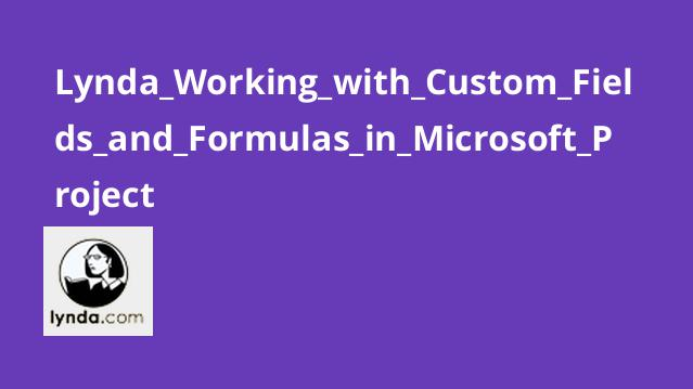 Lynda Working with Custom Fields and Formulas in Microsoft Project
