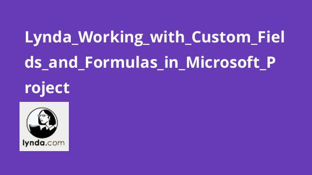 آموزش کار با فیلدهای سفارشی و فرمول ها در Microsoft Project