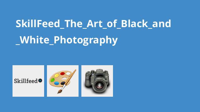 هنر عکاسی سیاه و سفید