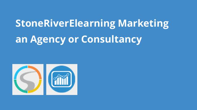 stoneriverelearning-marketing-an-agency-or-consultancy