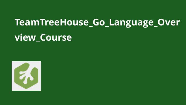 آموزش ویژگی های زبانGo