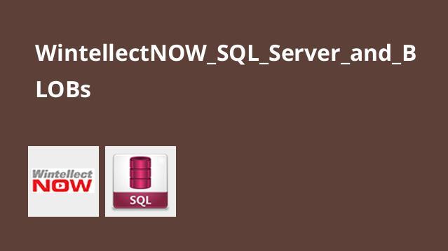 آموزش SQL Server و BLOBs