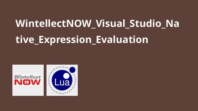 آموزشNative Expression Evaluation در ویژوال استودیو